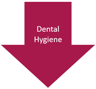Dental Hygiene arrow