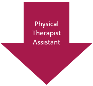 Physical Therapist Assistant arrow